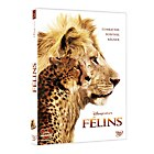 DVD Disneynature Félins
